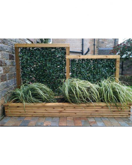 Urban 10 Laurel Expanding Hedge on Planter