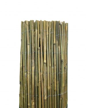 Whole Bamboo Screen Rolls